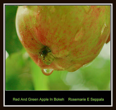 Red And Green Apple In Bokeh Art Print by Rosemarie E Seppala