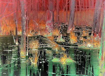 Abstract Beach Landscape Digital Art - Red And Green Backwater by Robin Curtiss
