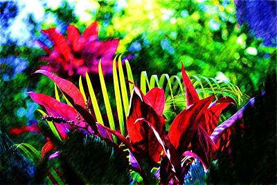 Photograph - Red And Green Plants by Richard Zentner