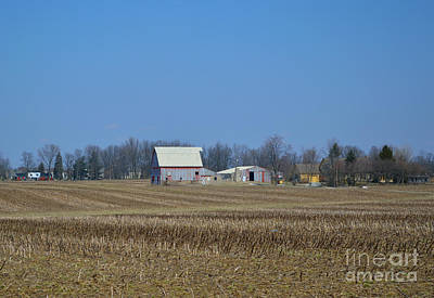 Barns Photograph - Red And White Barns by Alys Caviness-Gober
