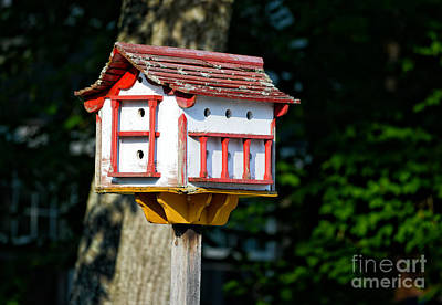 Typographic World Rights Managed Images - Red and White Birdhouse Royalty-Free Image by Les Palenik