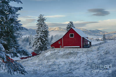Winterscene Photograph - Red And White by Idaho Scenic Images Linda Lantzy