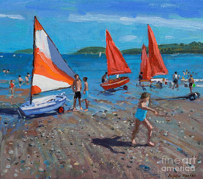 Red And White Sails Print by Andrew Macara