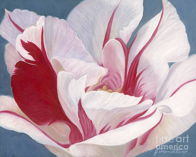 Painting - Red And White Tulip by Jeannette Tramontano