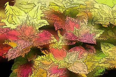 Red And Yellow Artistic Foliage Original