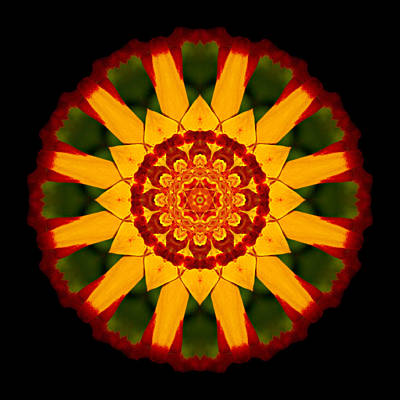 Photograph - Red And Yellow Marigold V Flower Mandala by David J Bookbinder