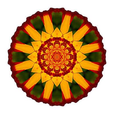 Photograph - Red And Yellow Marigold V Flower Mandala White by David J Bookbinder