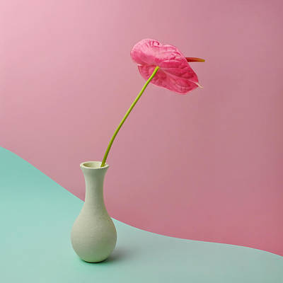 Photograph - Red Anthurium In White Vase by Juj Winn