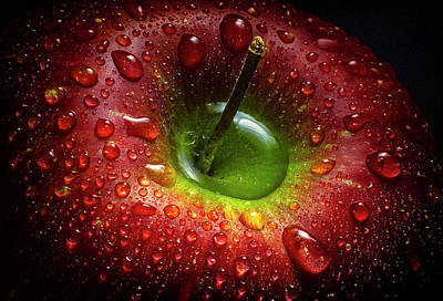 Wet Photograph - Red Apple by Aida Ianeva