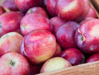 Red Apples Art Print by Rebecca Cozart