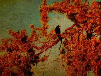 Red Autumn Art Print by Gothicrow Images