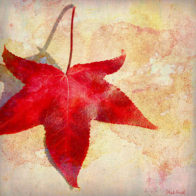 Photograph - Red Autumn by Heidi Smith