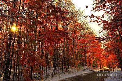 Red Autumn Road In Snow Art Print by Terri Gostola