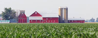 Cornfield Photograph - Red Barn And Cornfield  8420 by Jack Schultz