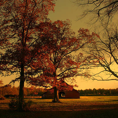 Luminism Photograph - Red Barn And Red Oaks In Autumn by Nina Fosdick