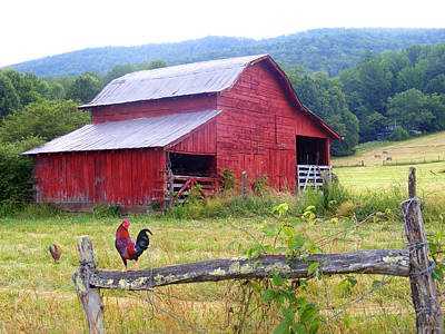 Red Barn And Rooster Art Print