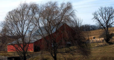 Photograph - Red Barn Augusta by Cathy Shiflett