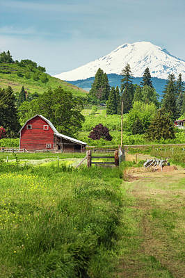 Scenic Photograph - Red Barn Green Farmland White Mountain by Fotovoyager