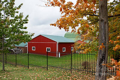Photograph - Red Barn In Autumn by Barbara McMahon