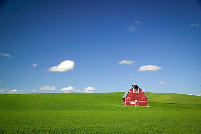 Photograph - Red Barn In Field by Randy Green