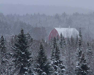 Barns In Snow Photograph - Red Barn In Maine by Jack Zievis