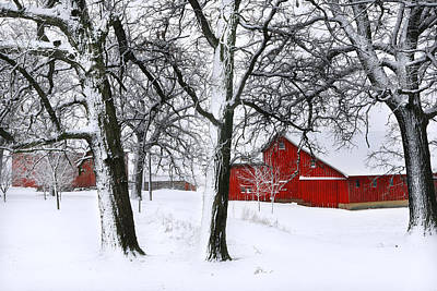 Barns In Snow Photograph - Red Barn In Snow by Carol Mellema