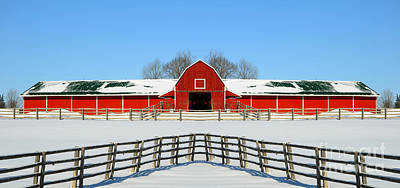 Photograph - Red Barn In Winter by Les Palenik