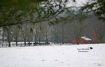 Winter Photograph - Red Barn Series V by Lynn Chendorain