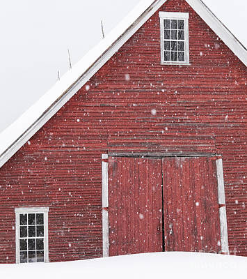 Photograph - Red Barn Snowfall by Alan L Graham