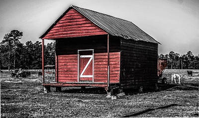 Steven Taylor Photograph - Red Barn  by Steven  Taylor