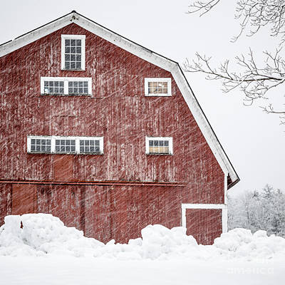 Red Barn Whiteout Art Print