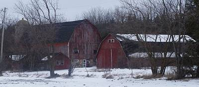 Art Print featuring the photograph Red Barns by Kristine Bogdanovich