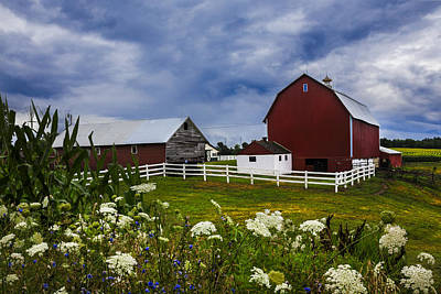 Photograph - Red Barns Under Blue Skies by Debra and Dave Vanderlaan