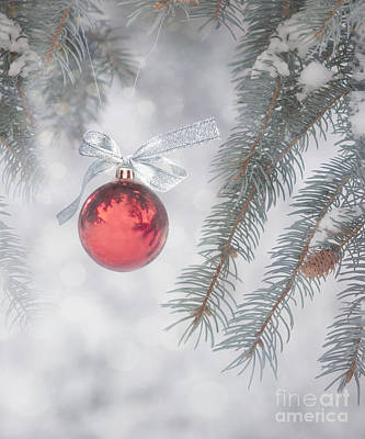 Baubles Photograph - Red Bauble by Juli Scalzi