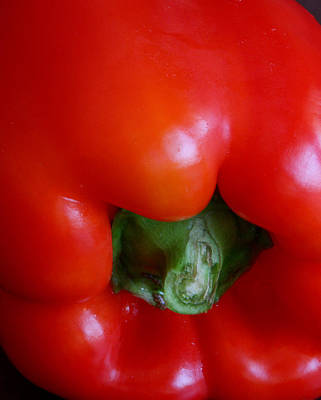 Photograph - Red Bell Pepper by Joe Kozlowski