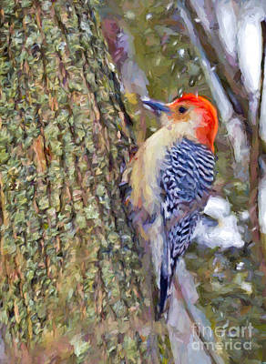 Photograph - Red-bellied Woodpecker As The Snow Falls by Kerri Farley