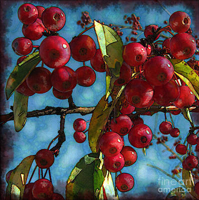 Photograph - Red Berries by Colleen Kammerer
