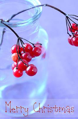 Door Locks And Handles - Red Berries Merry Christmas by Sabine Jacobs