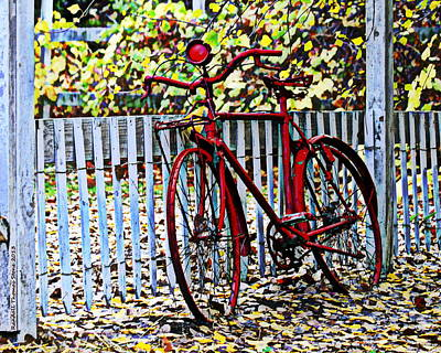 Photograph - Red Bike And Autumn Leaves by Randall Thomas Stone