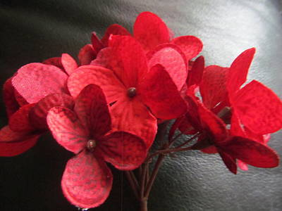 Pittsburgh According To Ron Magnes - Red Bouquet Flowers by Tina M Wenger