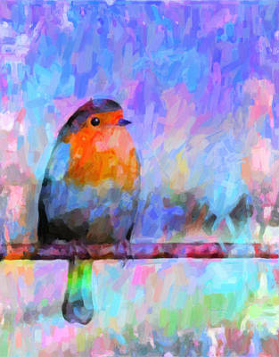 Red Breasted Robin Art Print by Kenny Francis