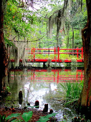 Photograph - Red Bridge Swamp View 2 by Randall Weidner