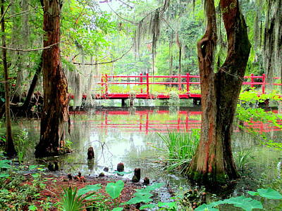 Photograph - Red Bridge Swamp View by Randall Weidner