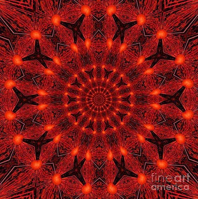 Concentration Digital Art - Red Butterfly One by Dawn Boyer