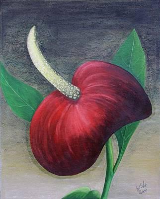 Red Calla Art Print