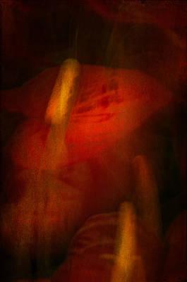 Photograph - Red Anthurium by Kasandra Sproson