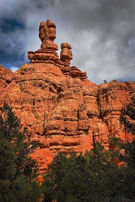 Photograph - Red Canyon by Barbara Manis