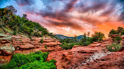 Photograph - Red Canyon by Donald J Gray