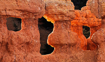 Red Canyon Art Print by Leland D Howard