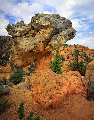 Photograph - Red Canyon by Ray Mathis